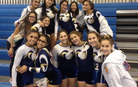 MHS Gymnastics Season Wrap Up