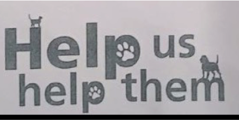 PAWS Linen Drive Needs Our Help