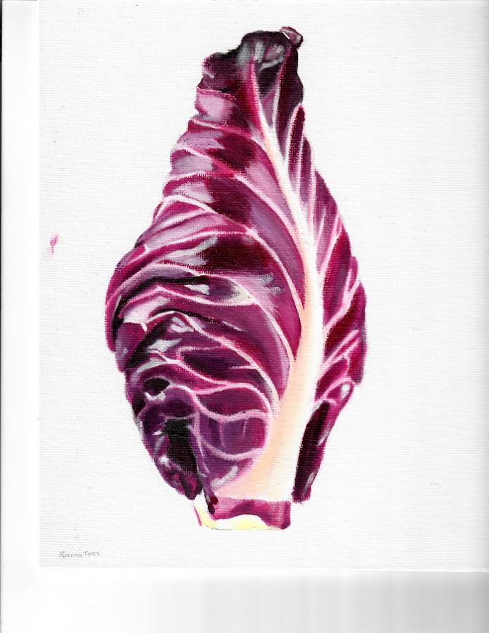 Lettuce+-+Bianca+Teves