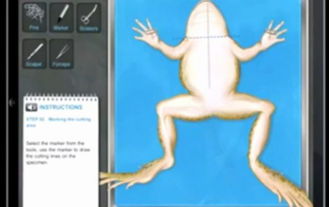 Virtual Dissection in the Classroom