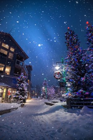 Holiday Season 2019: What are your plans for the holidays?